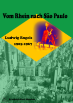 Vom Rhein nach Sao Paulo. Friedrich-Karl Hebeker (2016)